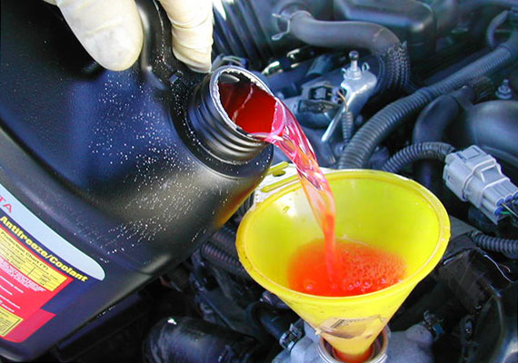 Рекомендации по замене жидкостей Honda Civic.